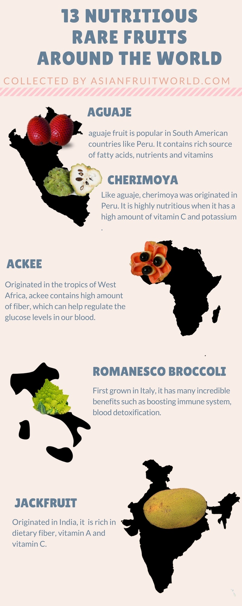 infographics rare fruits asianfruitworld 1