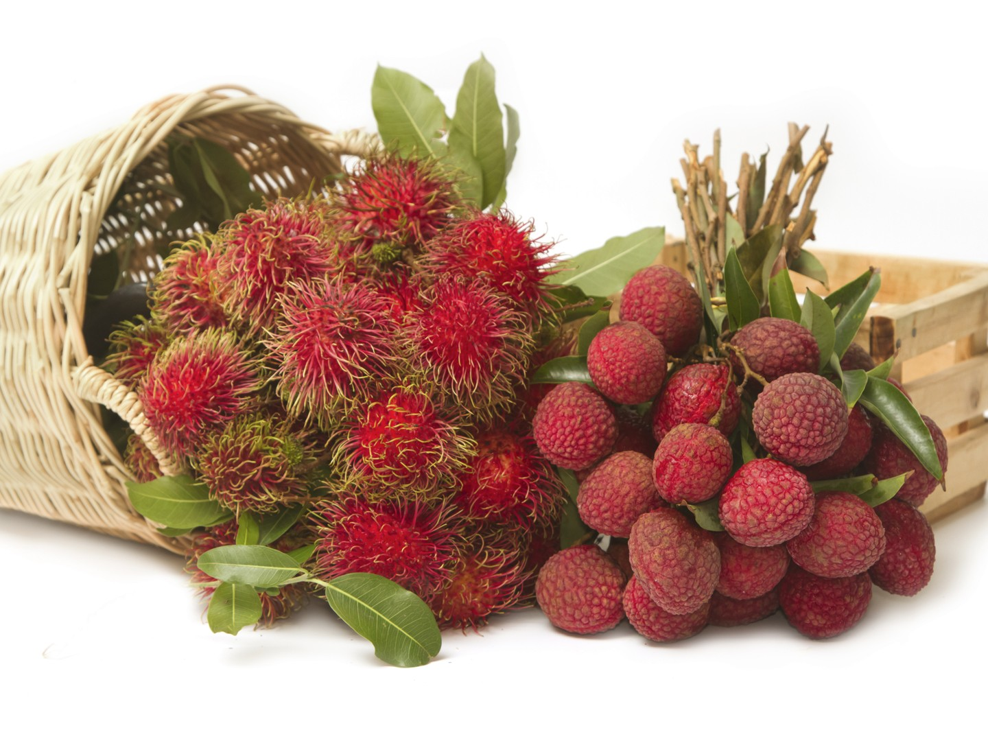 rambutan vs lychee how good