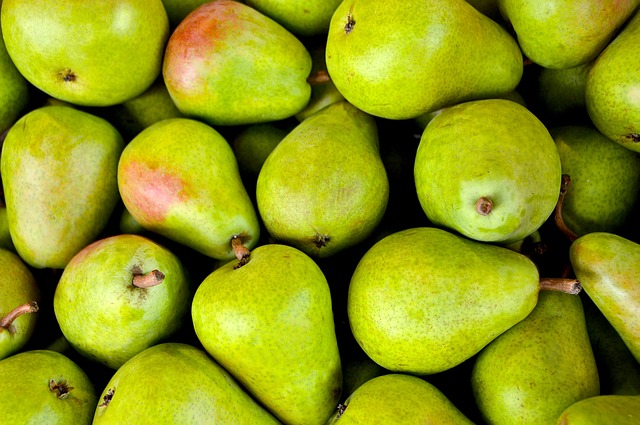 pears fruits for winter