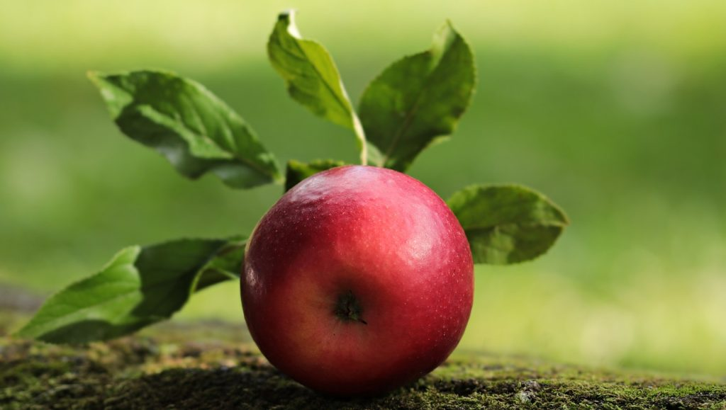 apple top 6 fruits to increase breast size