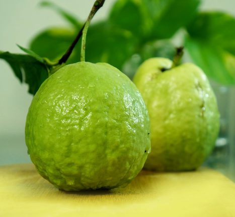 benefits of guava 2
