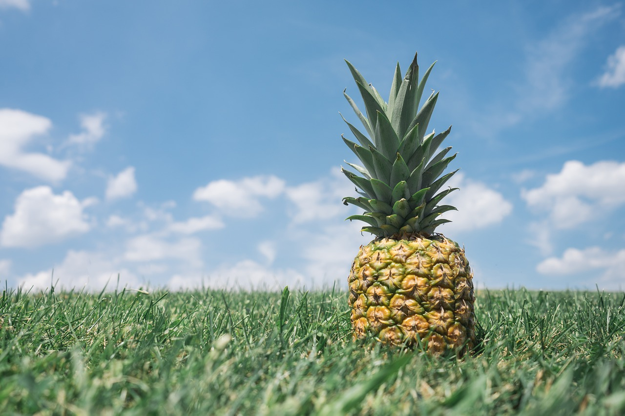pineapple benefits weight loss 2