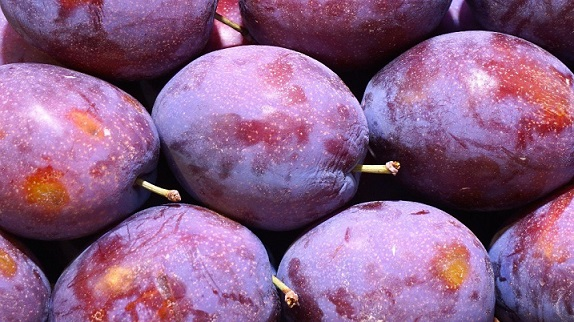 plums best fruits for people with diabetes
