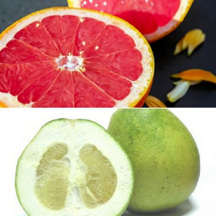 pomelo grapefruit